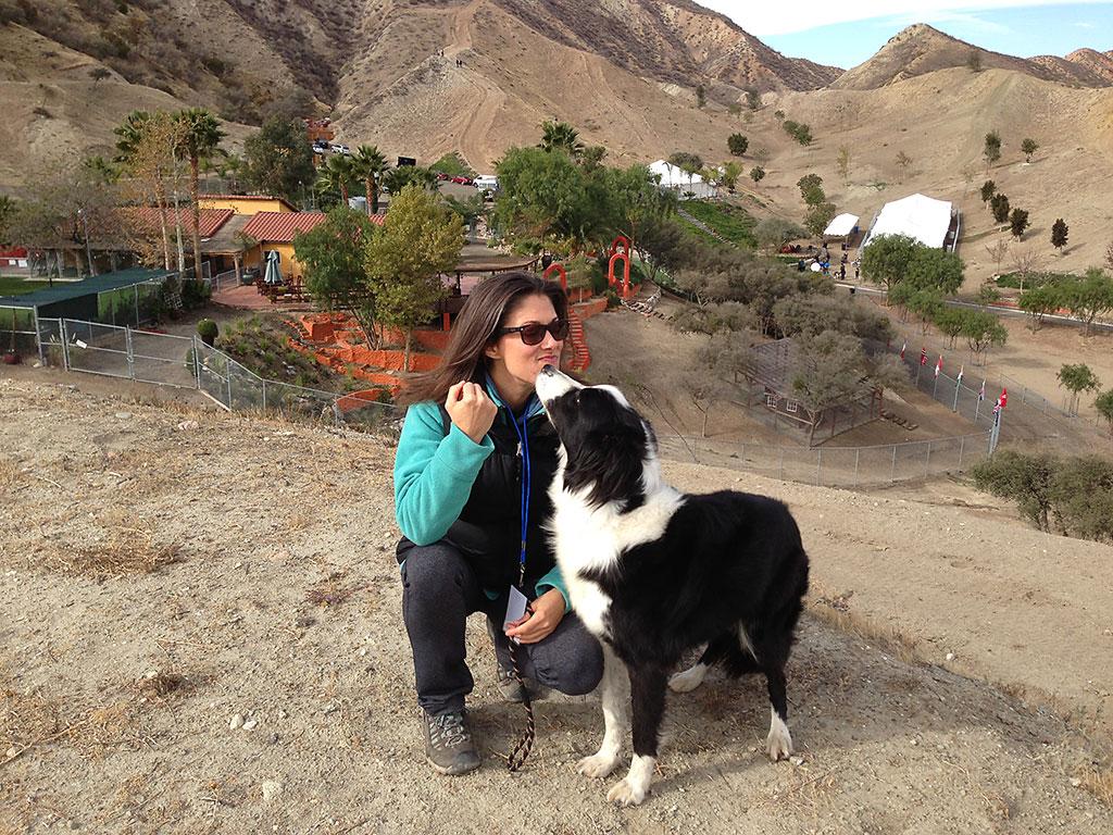 Dog Training Time and Commitment Full Image - Kindred Spirits Dog Training