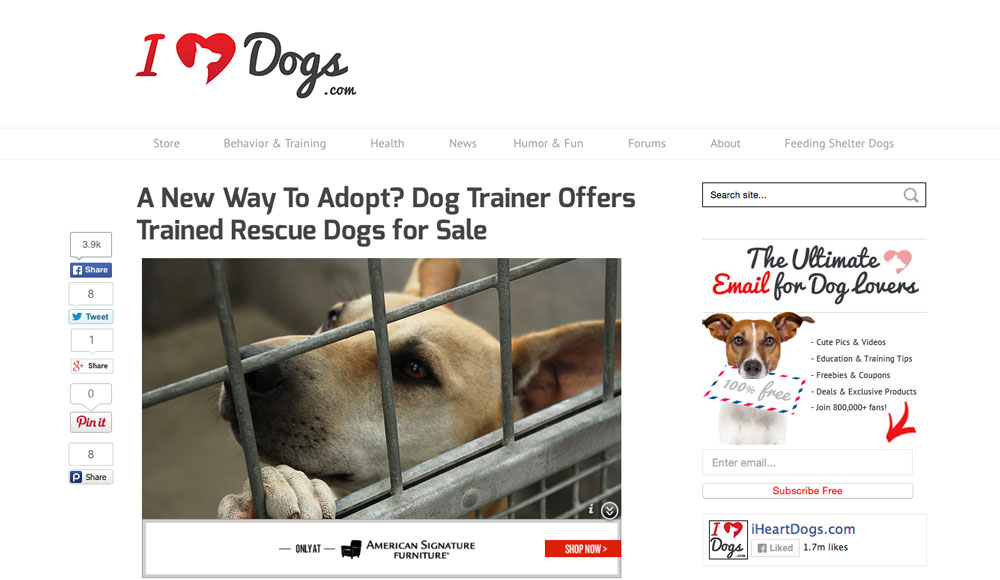 Kindred Spirits' Saved and Trained Program on iHeartDogs.com